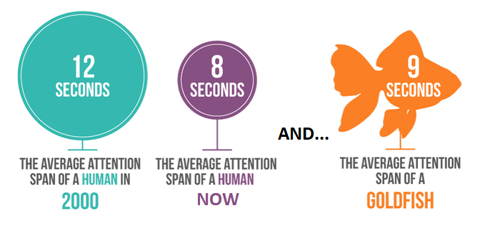 Human vs Goldfish Attention Span research - How to Write that Perfect Blog Post - 14 Pro Tips